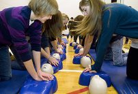 Generic pic - row of students - CPR